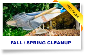 spring clean up, fall clean up, yard clean up